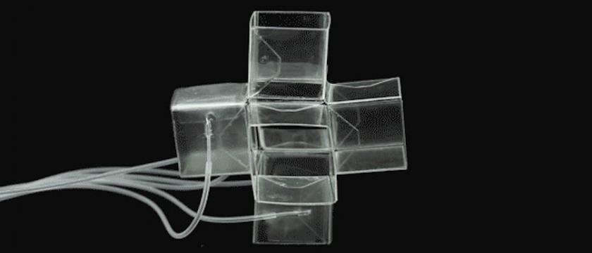 A single foldable structure comprising six cubes with 24 faces and 36 edges. Image: Harvard Engineering