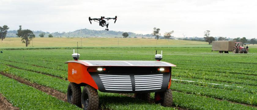 RIPPA – Robot for Intelligent Perception and Precision Application – has been in development for around three years and includes the VIIPA – Variable Injection Intelligent Precision Applicator, which is mounted to RIPPA and shoots weeds using a micro-dose of liquid.
