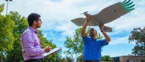 Drones based on birds soar above their limits