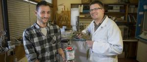 ANU's David Kainer and Dr Carsten Kulheim. Image: Stuart Hay, ANU