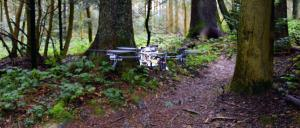 A drone detects a forest path and follows it autonomously. Photo: UZH; USI; SUPSI