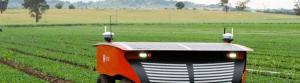 RIPPA and VIIPA, the University of Sydney's agriculural robots. Photo: University of Sydney