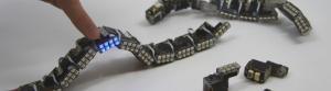 Shapeshifting modular interface inspired by snake robots